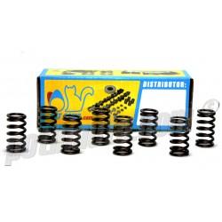 Coupelles renforcées catcams - R5 GT Turbo