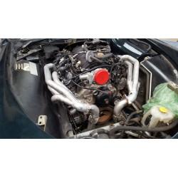 Echappement TVR Tamora - Moteur V8 LS2