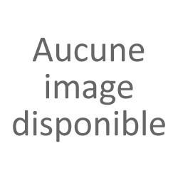 Tube afrique décata - Clio RS 182